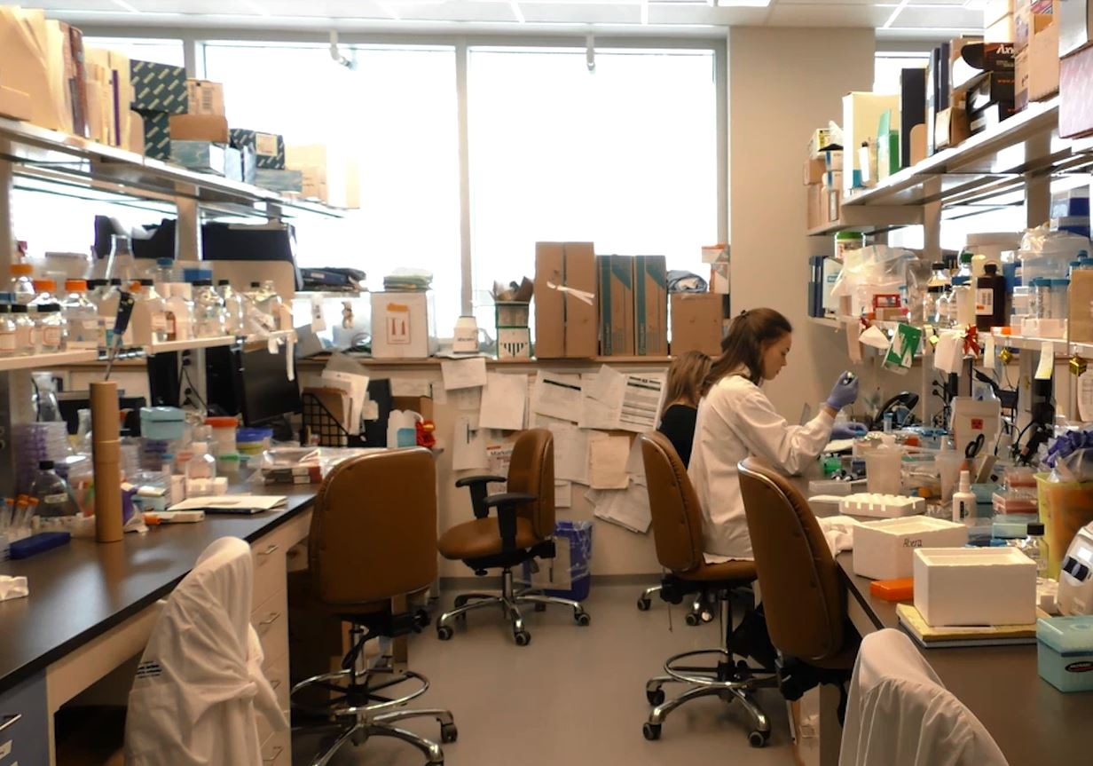 Interior photo of a medical lab and a technician working with specimens.
