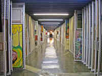 Interior view of the Canada Council's art collection storage area featuring thousands of paintings.